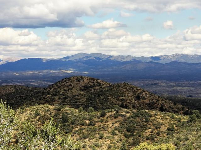 000 W Magnum Ridge, Peeples Valley, AZ 86332 (MLS #1016274) :: Conway Real Estate