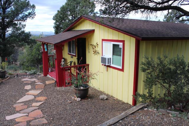 15290 N Hootennanny Road, Prescott, AZ 86305 (#1016395) :: Shelly Watne