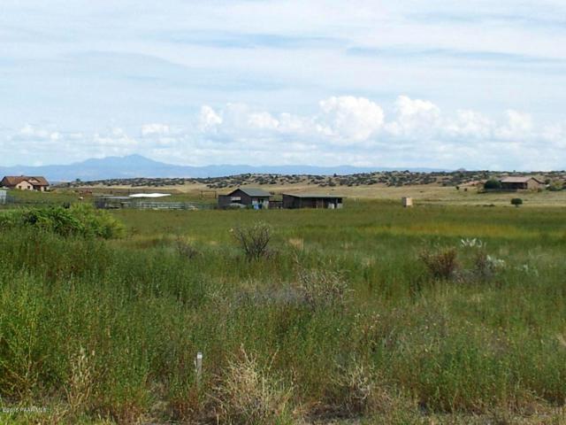 1395 S Lakeshore Drive, Chino Valley, AZ 86323 (#1016547) :: HYLAND/SCHNEIDER TEAM