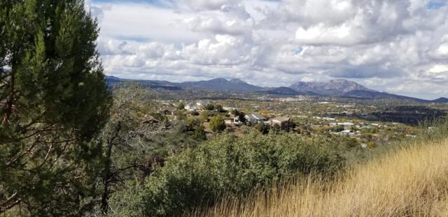 455 Newport Drive, Prescott, AZ 86303 (#1016717) :: The Kingsbury Group