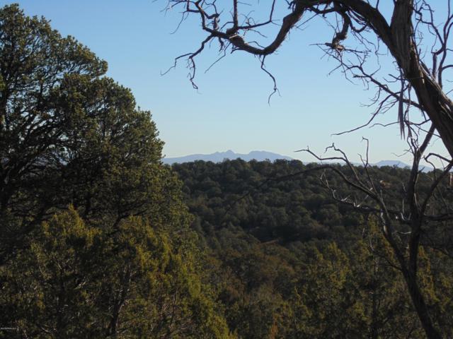 1425 Sierra Verde Ranch, Seligman, AZ 86337 (#1016839) :: HYLAND/SCHNEIDER TEAM