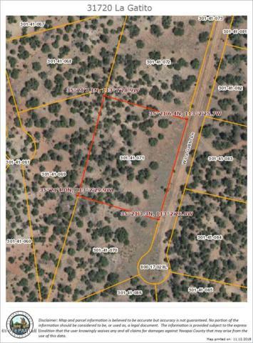 31720 W La Gatito, Seligman, AZ 86337 (#1016843) :: HYLAND/SCHNEIDER TEAM