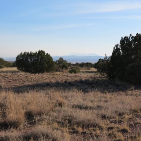 1829 W Silent Spring Canyon, Paulden, AZ 86334 (#1016868) :: HYLAND/SCHNEIDER TEAM