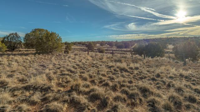 0 N Upper Verde Trail, Paulden, AZ 86334 (#1017837) :: West USA Realty of Prescott