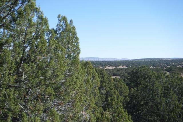 Tbd Flaming Star, Seligman, AZ 86337 (MLS #1017848) :: Conway Real Estate