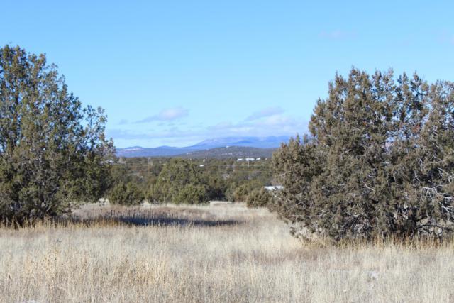 3938 Verde Road, Williams, AZ 86046 (MLS #1017849) :: Conway Real Estate