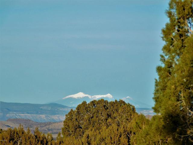 20 Acres W Longbranch Trail, Prescott, AZ 86305 (#1017941) :: HYLAND/SCHNEIDER TEAM