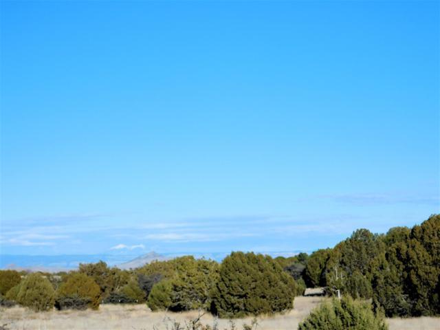 10 Acres S Cowboy Springs Trail, Prescott, AZ 86305 (#1017943) :: HYLAND/SCHNEIDER TEAM