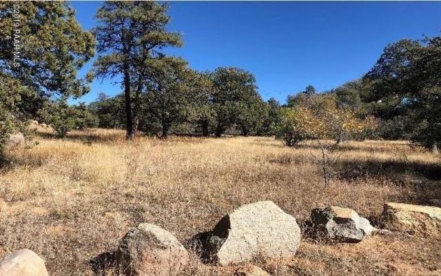 1646 W Iron Springs Road, Prescott, AZ 86305 (#1017955) :: Shelly Watne