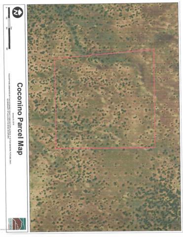 334 Westwood Ranch, Ash Fork, AZ 86320 (#1018007) :: Shelly Watne