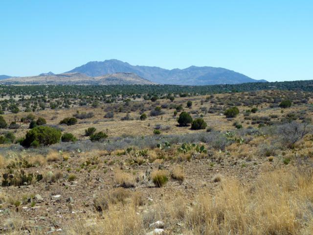 3630 W Deer Trail, Chino Valley, AZ 86323 (#1018075) :: West USA Realty of Prescott