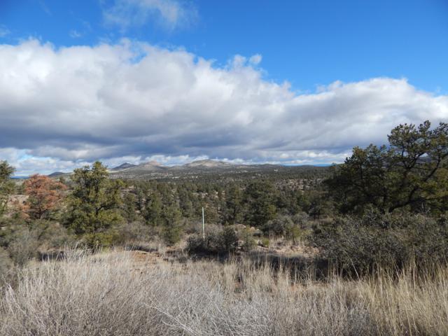 16151 N Top View Lane, Prescott, AZ 86305 (#1018602) :: Shelly Watne