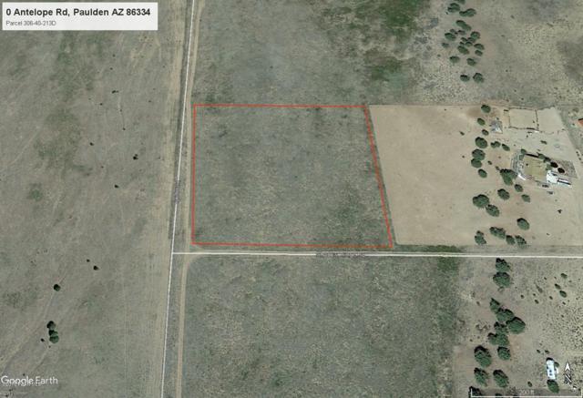 0 Antelope Road, Paulden, AZ 86334 (#1019359) :: HYLAND/SCHNEIDER TEAM