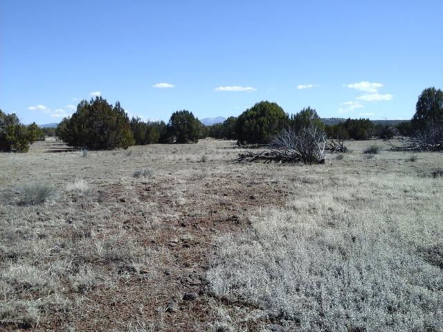 Lot 251c Juniperwood Ranch, Ash Fork, AZ 86320 (#1019372) :: HYLAND/SCHNEIDER TEAM