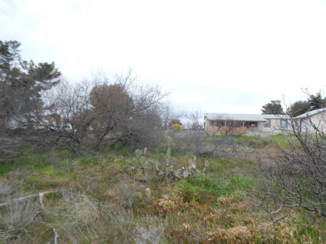 17472 E Bob White Road, Spring Valley, AZ 86333 (#1019373) :: HYLAND/SCHNEIDER TEAM