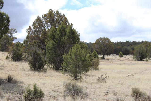 Tbd Antelope Run, Seligman, AZ 86337 (#1019470) :: HYLAND/SCHNEIDER TEAM