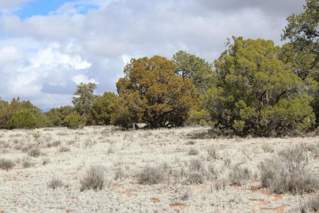 Tbd Humming Bird Lane, Seligman, AZ 86337 (#1019471) :: HYLAND/SCHNEIDER TEAM