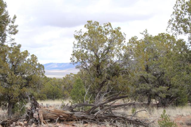 Tbd (2) Humming Bird Lane, Seligman, AZ 86337 (#1019473) :: HYLAND/SCHNEIDER TEAM