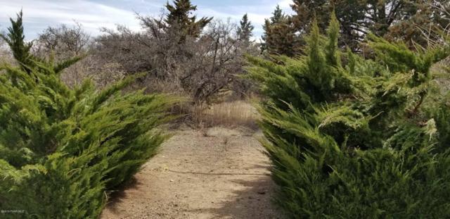 9 Cienega Drive, Prescott, AZ 86301 (#1019499) :: HYLAND/SCHNEIDER TEAM