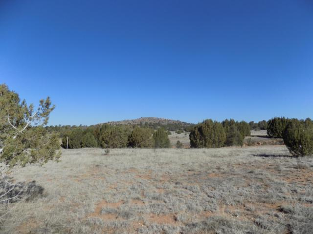 11930 W Six Shooter Road, Prescott, AZ 86305 (#1019515) :: HYLAND/SCHNEIDER TEAM