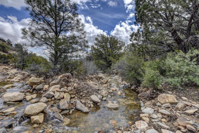 0 Forest Service Road 20, Mayer, AZ 86333 (#1019809) :: HYLAND/SCHNEIDER TEAM