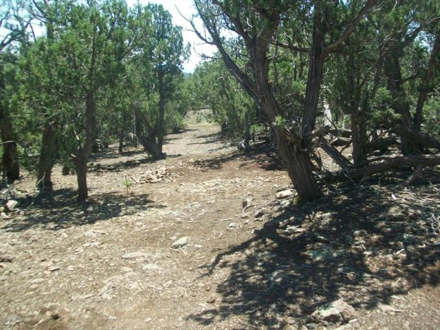 15458 N Sevens Ranch Road, Ash Fork, AZ 86320 (MLS #1019830) :: Conway Real Estate