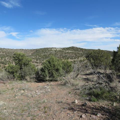 00 N Spotted Dog Trail, Chino Valley, AZ 86323 (#1020055) :: Shelly Watne