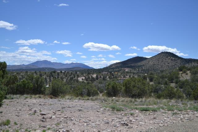 3710 N Mesa Shadows Road, Chino Valley, AZ 86305 (#1020277) :: Shelly Watne