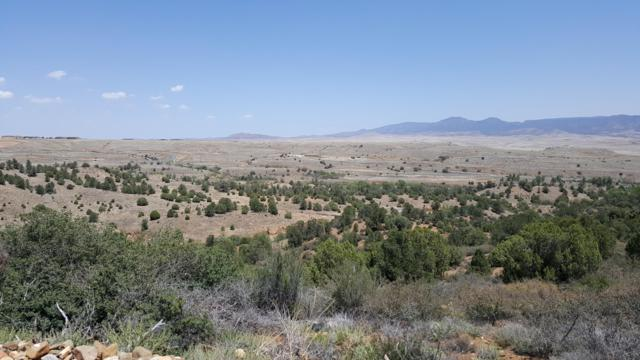 1567 N Overlook Drive, Dewey-Humboldt, AZ 86327 (#1020306) :: Shelly Watne