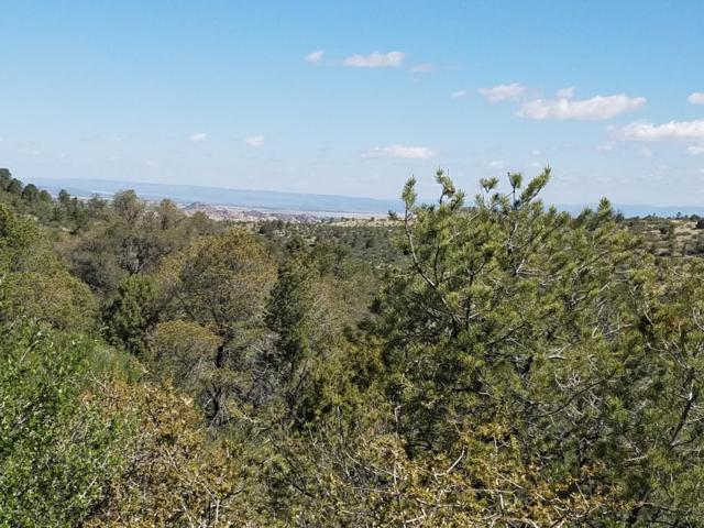 255 Sleepyglen Circle, Prescott, AZ 86303 (#1020675) :: HYLAND/SCHNEIDER TEAM