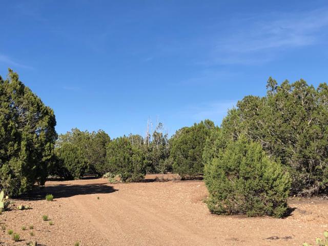0 N Tapper Trl, Prescott, AZ 86305 (#1020692) :: Shelly Watne