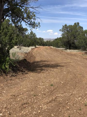 0 W Little Oso Trail, Seligman, AZ 86337 (#1020795) :: HYLAND/SCHNEIDER TEAM