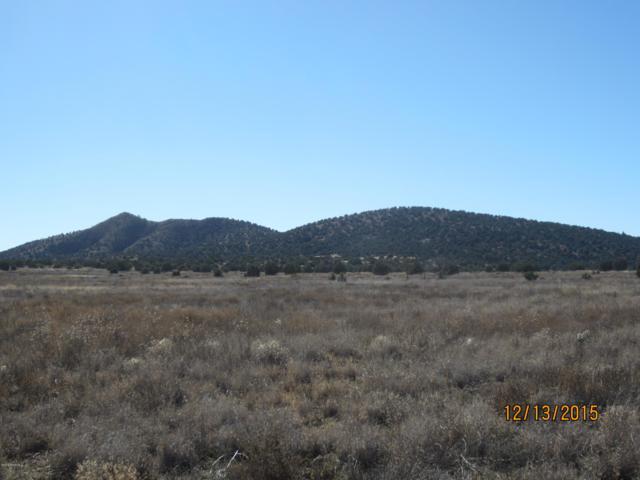21200 N Ridgeview, Paulden, AZ 86334 (#1021223) :: HYLAND/SCHNEIDER TEAM