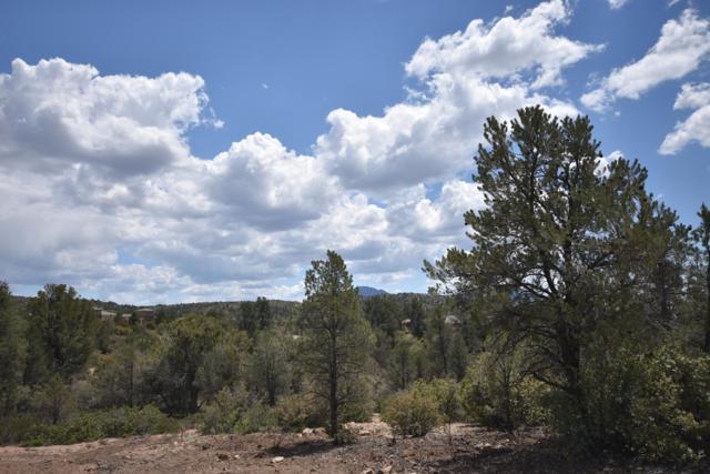 5820 Freda Circle, Prescott, AZ 86305 (MLS #1021245) :: Conway Real Estate