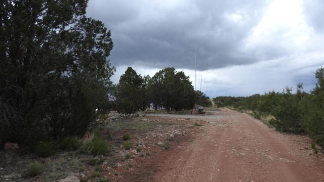 56352 N Avenida Derecha, Seligman, AZ 86337 (#1021268) :: HYLAND/SCHNEIDER TEAM