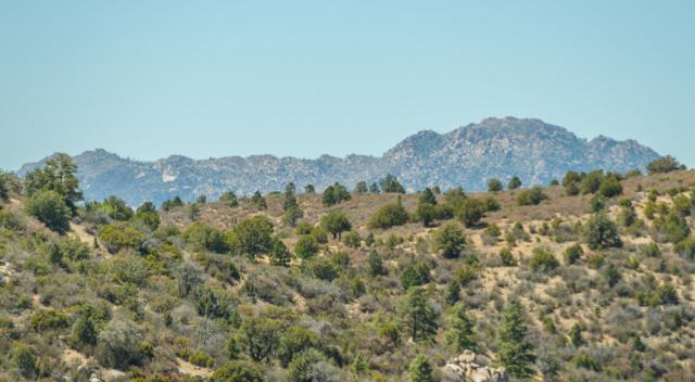 1328/1334 Pine Ridge Drive, Prescott, AZ 86303 (#1021280) :: Shelly Watne