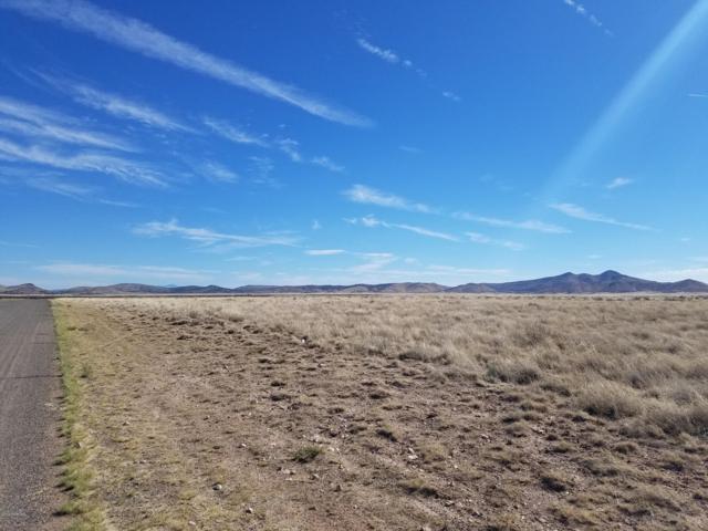 Parcel C Off Antelope Meadows Drive, Prescott Valley, AZ 86315 (#1021546) :: Shelly Watne