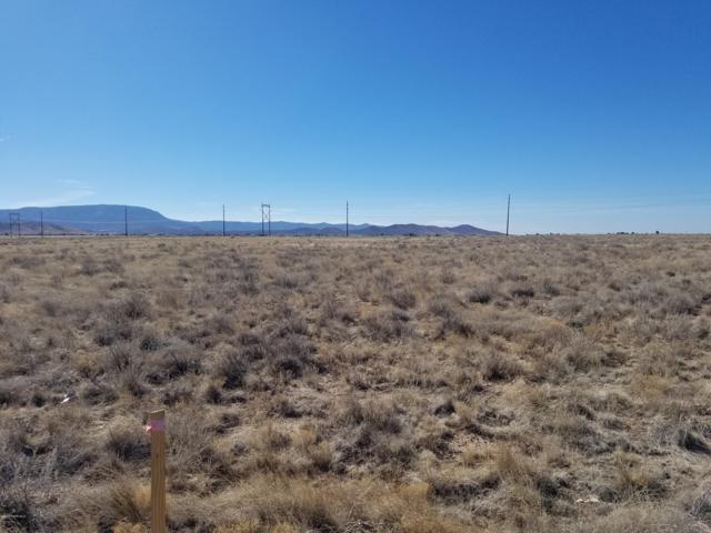 Parcel D Off Antelope Meadows Drive, Prescott Valley, AZ 86315 (#1021547) :: Shelly Watne