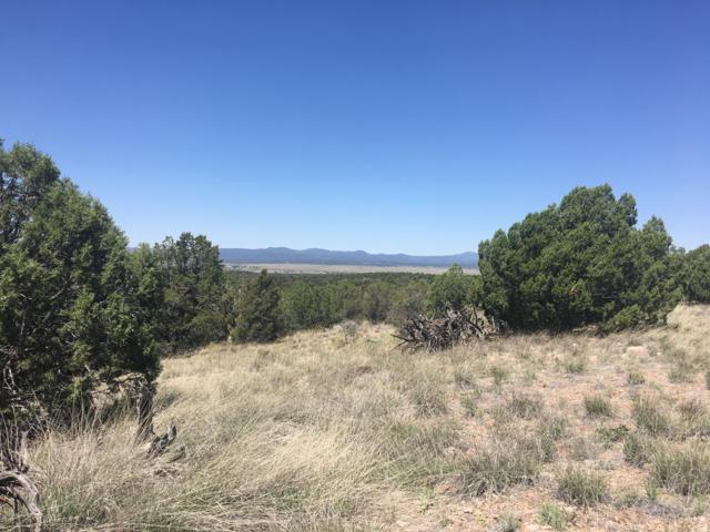 0 Rambling Lot 87C Road, Prescott, AZ 86305 (#1021673) :: Shelly Watne
