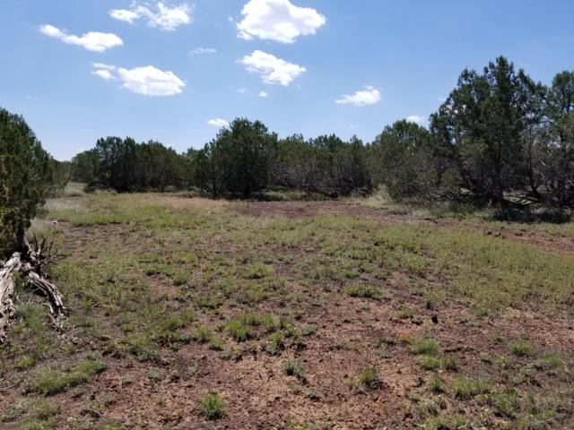 2076 W Rincon Drive, Ash Fork, AZ 86320 (#1021695) :: West USA Realty of Prescott