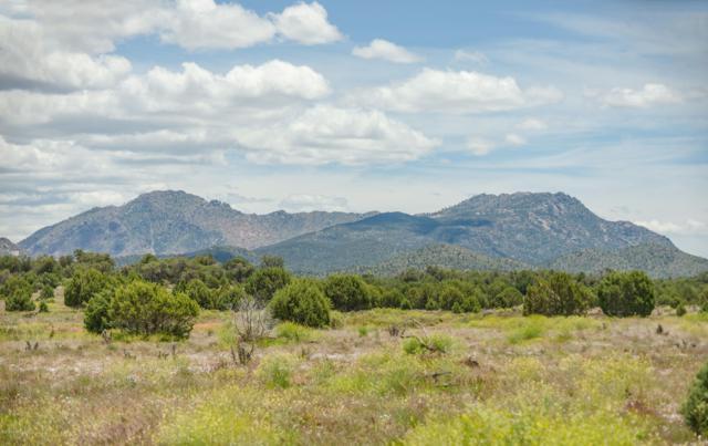 0 N Puntenney Road, Prescott, AZ 86305 (#1021793) :: West USA Realty of Prescott