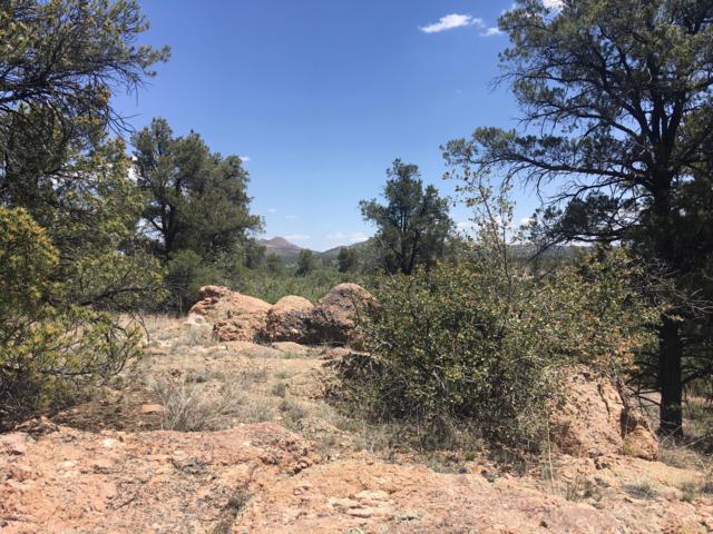16700 N Top View Lane, Prescott, AZ 86305 (#1021888) :: Shelly Watne