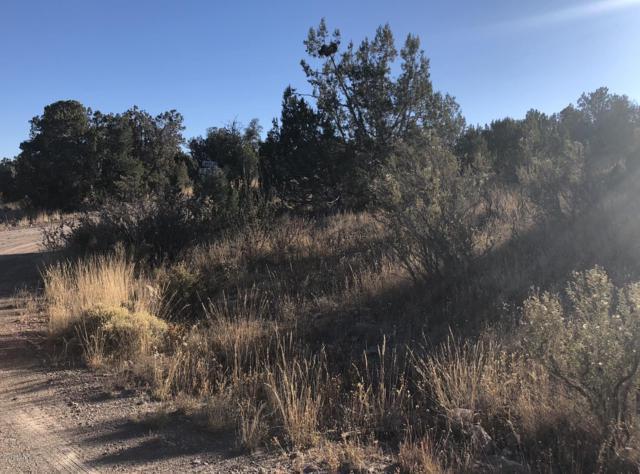 1898 N Conquistador Parkway, Seligman, AZ 86337 (#1022026) :: West USA Realty of Prescott