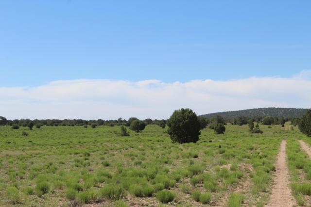 Lot 73 Antelope Valley Ranches, Seligman, AZ 86337 (MLS #1022072) :: Conway Real Estate