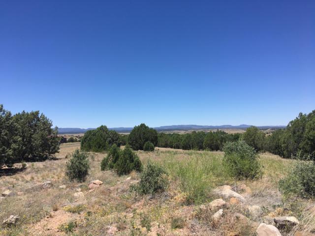8100 W Dillon Wash Road, Prescott, AZ 86305 (#1022264) :: Shelly Watne