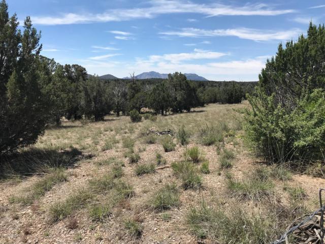 5650 W Dillon Wash Road, Prescott, AZ 86305 (#1022302) :: HYLAND/SCHNEIDER TEAM