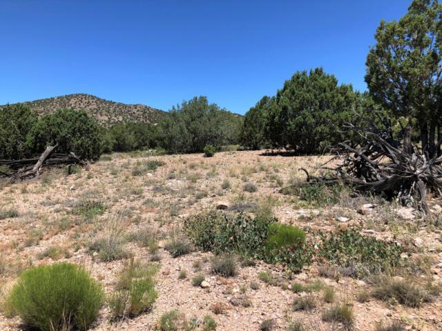 18700 N Butte Pass Road, Prescott, AZ 86305 (#1022327) :: West USA Realty of Prescott