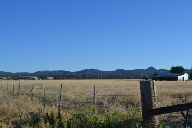 0 N Feather Mountain Drive, Paulden, AZ 86334 (#1022358) :: HYLAND/SCHNEIDER TEAM