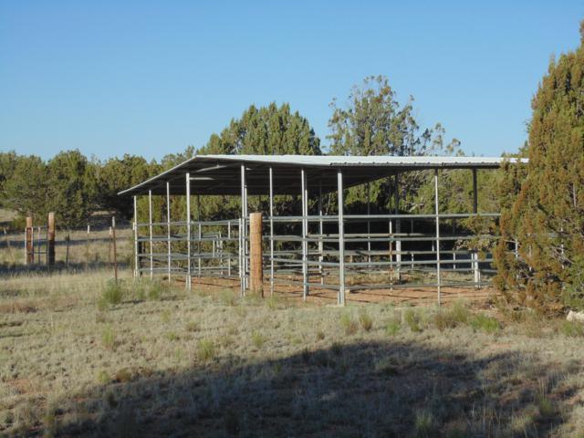 380 Sierra Verde Ranch, Seligman, AZ 86337 (#1022392) :: West USA Realty of Prescott