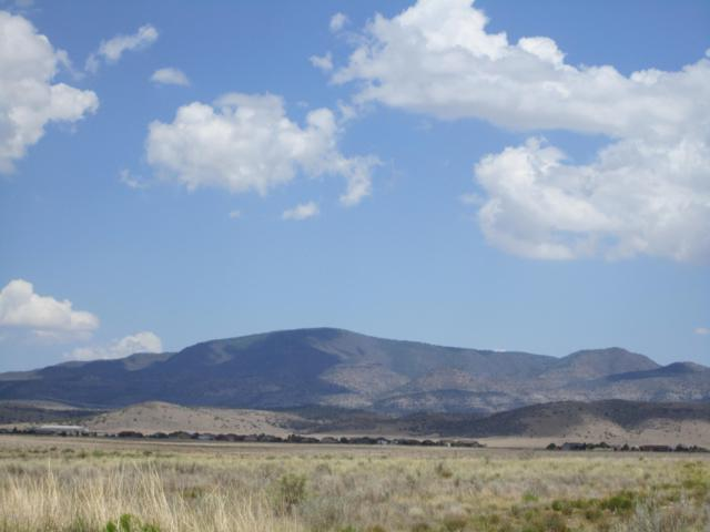 7660 E Kimberlite Lane, Prescott Valley, AZ 86305 (#1022422) :: Shelly Watne